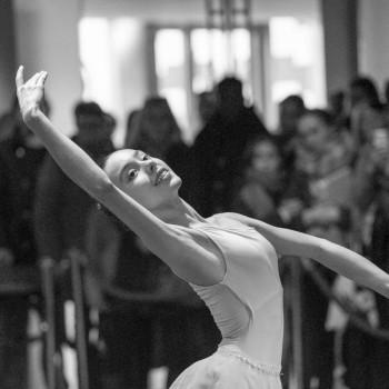 portretfotografie fotonia dans